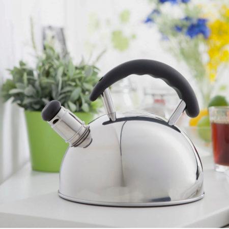 Чайник MAX 2,5 л